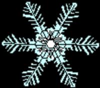 Snowflake 5k - Erie, PA - race6015-logo.buyEEW.png