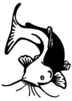 Crescent City Catfish 5K - Crescent City, FL - race69008-logo.bB6Vkk.png