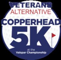 2019 Veterans Alternative Copperhead 5K - Palm Harbor, FL - race69231-logo.bB8VRn.png