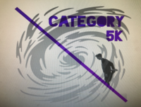 Category 5K - Gainesville, FL - race69163-logo.bCaxCs.png