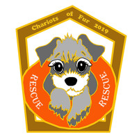 Chariots of Fur 5K - Jacksonville Beach, FL - chariots_dog_orange_medal2.jpg