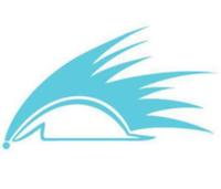 Sonic Endurance Texas Training Camp - Galveston, TX - race70361-logo.bCjNk2.png