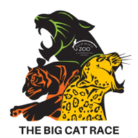 Big Cat Race 5K - May 2, 2020 - West Palm Beach, FL - race70054-logo.bCeS_T.png