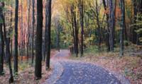 Run To Breathe Half Marathon & 5K - Portersville, PA - race57501-logo.bAFErB.png