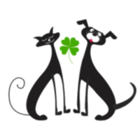 Nate's St. Patrick's Day Trail Run/Walk 5K - Parrish, FL - race71159-logo.bCq2bk.png