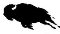 Buffalo Trace Trail Race - Mahomet, IL - race68478-logo.bB01FE.png