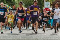 2019 Mendo Human Race - Ukiah, CA - race71850-logo.bCu3Jd.png