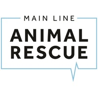 Main Line Animal Rescue's Tails & Trails 5K Run/2K Walk 2019 - Phoenixville, PA - 08c8d619-25be-4567-9ee0-03cc36856d76.jpg