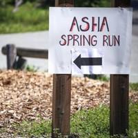 Asha Spring Run 2019 - Los Gatos, CA - SpringRunlogo.jpg