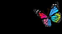 The Women's Run Series - Special Edition Phoenix - Peoria, AZ - 87d61f76-0a2b-4012-8c77-6205b380a93f.png