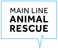 Main Line Animal Rescue's 4th Annual Gran Fondo Cycling Event 2019 - Phoenixville, PA - 6c91ca01-235d-4cda-8a6a-23da196b5574.png