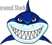 Sherwood Shark 5k run/walk 2019 - Lima, OH - race75036-logo.bCR9Mt.png