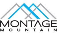 Montage Mountain Trail Half Marathon - Scranton, PA - race75368-logo.bCUIu2.png