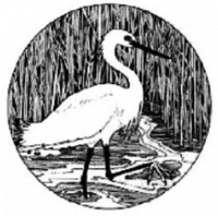 Snowy Egret 5K Race/Walk - Scarborough, ME - race27180-logo.bwAB61.png