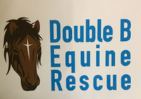 Run For The Horses 5K - Madison, ME - race59275-logo.bBr19a.png