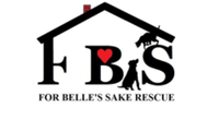 Rescue Run 5K - Minot, ND - race75121-logo.bCS4w8.png