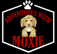 Moxie's Mission: 6 legged Relay Fun Run @ Bar K Dog Bar PLEASE SEE IMPORTANT UPDATE ABOUT DATE CHANGE! - Kansas City, MO - race73874-logo.bCQmvR.png