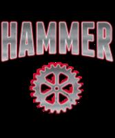 Hartsburg Hammer - Hartsburg, MO - race74381-logo.bCM4Kn.png
