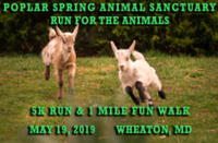 Run for the Animals - Wheaton, MD - race72247-logo.bCyiUL.png