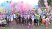 Algonac High School - Color Out Cancer Run 2019 - Algonac, MI - race30881-logo.bw0fJW.png