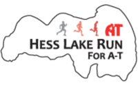 Hess Lake Run - Newaygo, MI - race43340-logo.byKo2U.png