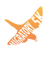 Migratory 5K Fun Run - Holland, MI - race33751-logo.bx3_qA.png