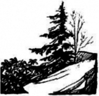 Highlands Sky 40 Mile Trail Run - Davis, WV - race13706-logo.buALvP.png