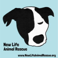 Gone to the Dogs 5K/1Mile - Columbus, NJ - race76213-logo.bC2dLL.png