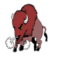 Buffalo Run - Saint Ignatius, MT - race76412-logo.bC3Dko.png