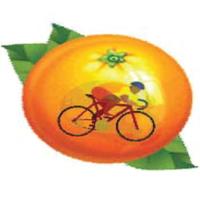 Tour d'Orange - Hillsborough, NC - 7e88b87a-eef7-4f99-96c2-b57b7ecd7256.jpg