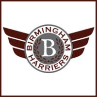 Birmingham Harriers 5K Run/Walk - Birmingham, MI - race9818-logo.bC6-Km.png