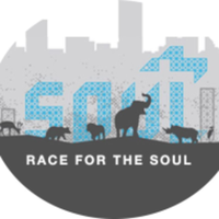 Race for the Soul - Powell, OH - race77119-logo.bC-69W.png