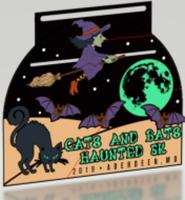 Cats & Bats Haunted 5K - Aberdeen, MD - race77241-logo.bDaayf.png