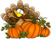 TURKEY FUN RUN - Stanwood, WA - race39451-logo.bx6bC8.png