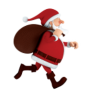 Nite Lites Christmas 5K Fun Run/Walk - Brooklyn, MI - race12233-logo.bucguL.png