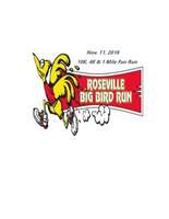 Big Bird Run - 41st Annual - Roseville, MI - 38a374b8-cdd7-468d-8c15-308218120d61.jpg