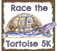 2020 Race the Tortoise 5K Run/Walk - High Springs, FL - race79373-logo.bDtkBN.png