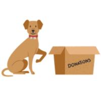 RunSignup - Facebook Fundraiser API Demo - Moorestown, NJ - race79833-logo.bDwU7u.png