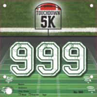 Touchdown 5K - Newark, DE - race69376-logo.bDCAhZ.png
