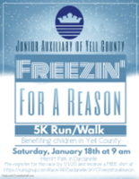 Freezin' for a Reason - Dardanelle, AR - race69734-logo.bDNJV3.png