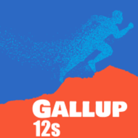 Gallup 12s - November 16 - Rehoboth, NM - race82443-logo.bDS3O-.png