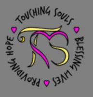 Touching Souls Foundation Frosty 5k - Charlotte, MI - race1604_logo.brTW5Z.png