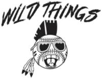Wild Things 5k presented by Bill Jarrett Ford - Sebring, FL - race83510-logo.bD1OvS.png