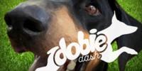 Dobie Dash - Glendale, AZ - race83664-logo.bD3yCO.png