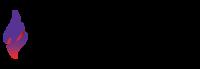 Lansing Stroll for Epilepsy - Lansing, MI - race84186-logo.bD877s.png