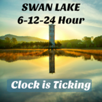 Swan Lake 6-12-24 Hour - Greenville, SC - race84444-logo.bD_SGK.png