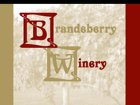 Brandeberry Wine Run 5k - Enon, OH - race85599-logo.bEiWLp.png