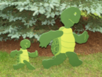 Wilson Hill Turtle Trot Run/Walk - Massena, NY - race86046-logo.bElXsn.png