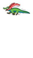 St. Brendan's The Navi-Gator 5K - Cumming, GA - race60010-logo.bEpFet.png