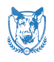 K9s United 5K/9K/1Mile Fun Run - St. Petersburg - St Petersberg, FL - race86230-logo.bEmGbk.png